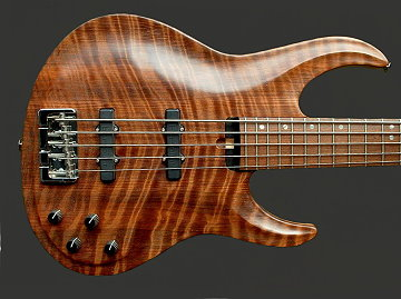 5-string bolt-on bass, Curly Redwood top
